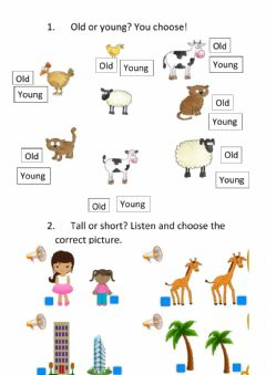 Interactive worksheet Tall - short - Old - Young