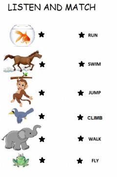 Interactive worksheet Pet animal actions