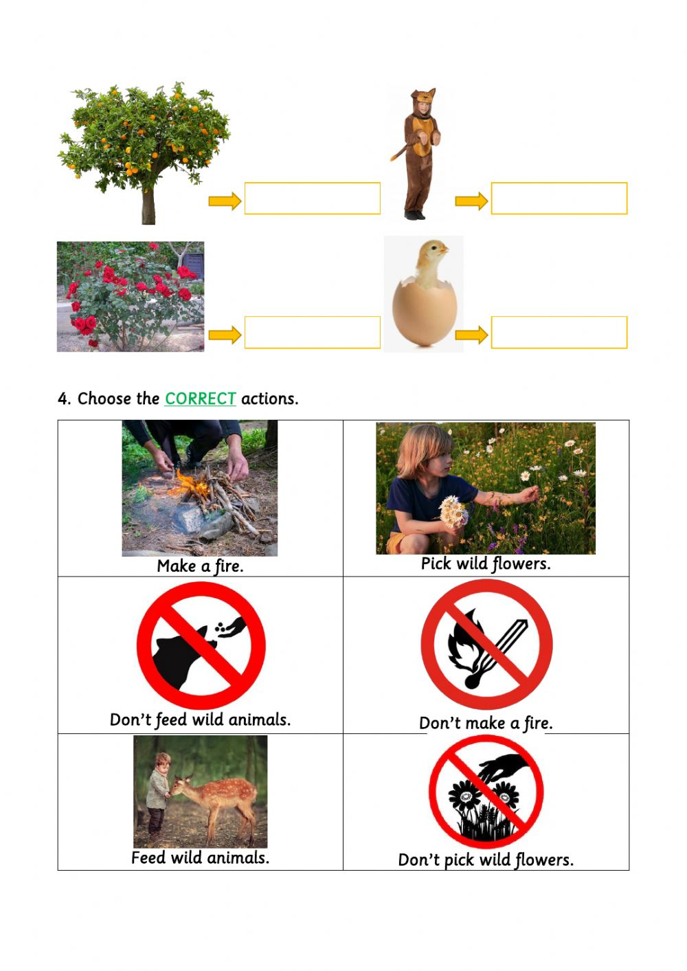 Living and non-living things worksheet for 1.º DE PRIMARIA