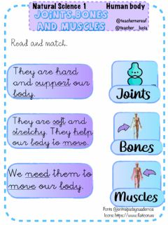 Interactive worksheet Human body: bones, muscles and joins