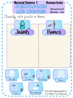Interactive worksheet Human body:bones, muscles and joints