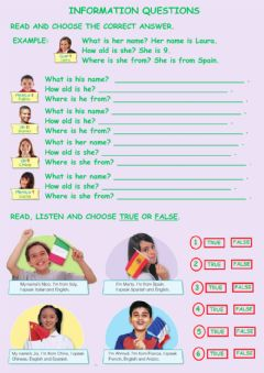 Interactive worksheet Information questions
