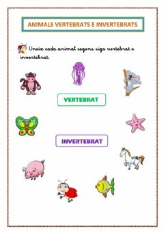 Interactive worksheet Animals VERTEBRATS e INVERTEBRATS