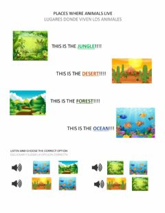 Interactive worksheet Animals and places