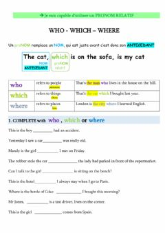 Interactive worksheet RELATIVE CLAUSES - phrases relatives