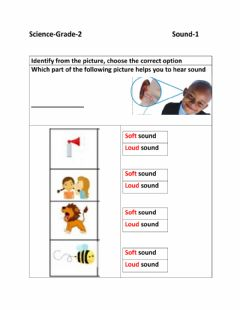 Interactive worksheet Sound-1