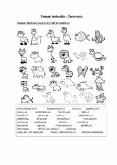 Interactive worksheet Animalia