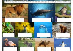 Interactive worksheet COSA MANGIANO GLI ANIMALI