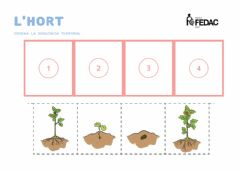 Interactive worksheet Hort