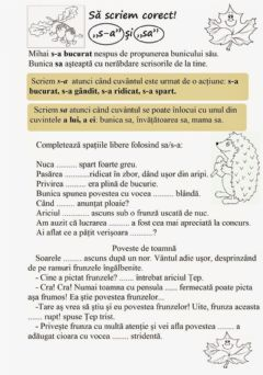Interactive worksheet Ortogramele s-a-sa