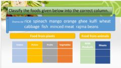 Interactive worksheet Classify the food products