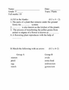 Interactive worksheet Interactive Test 2 on Plants