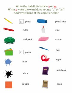Interactive worksheet Practice: Indefinite Articles and Vocabulary