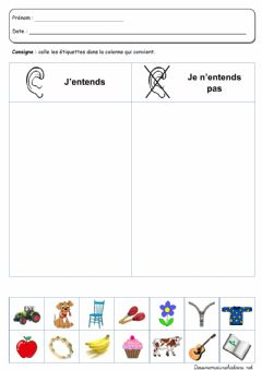 Interactive worksheet Le 5 sens2