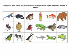 Ficha interactiva Groups of animals