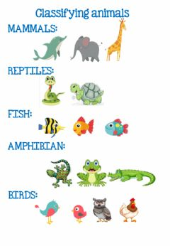 Interactive worksheet Classifying animals