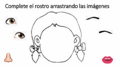 Interactive worksheet Completa el rostro