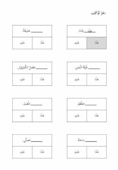 Interactive worksheet اسم الاشارة