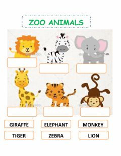 Ficha interactiva Zoo animals