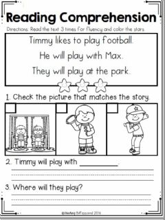 Interactive worksheet Reading Comprehension - Timmy