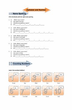 Interactive worksheet Name Spelling and Number