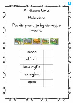 Interactive worksheet Wilde diere