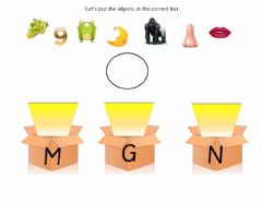Ficha interactiva Put the objects in the correct box