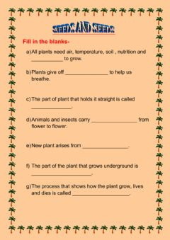Interactive worksheet Seeds and seeds