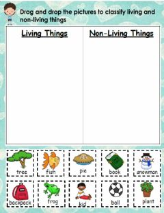 Ficha interactiva Living and non-living things