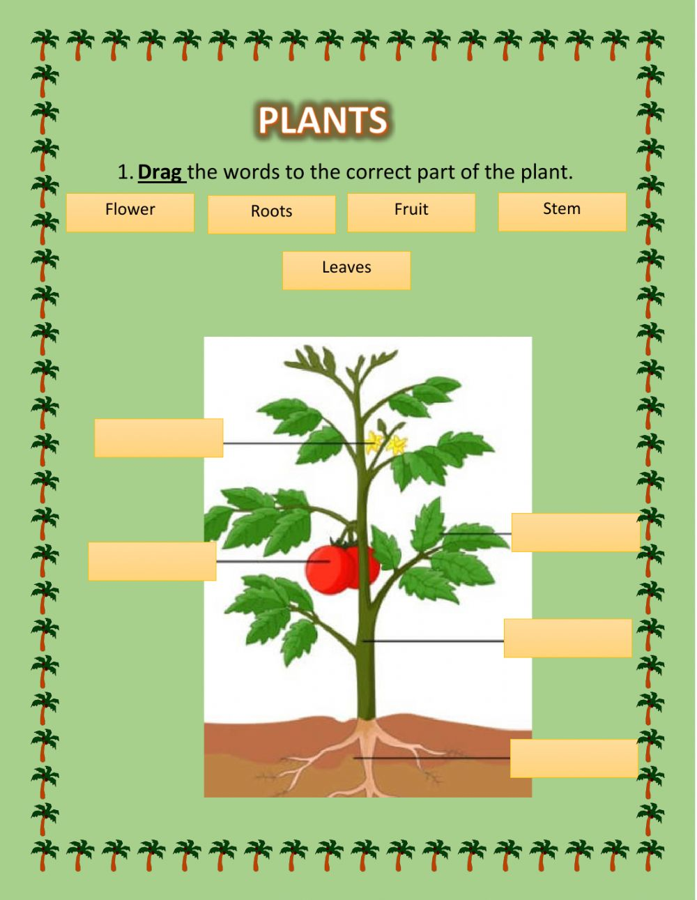 Parts of the plant interactive exercise for primero