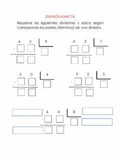 Interactive worksheet División exacta