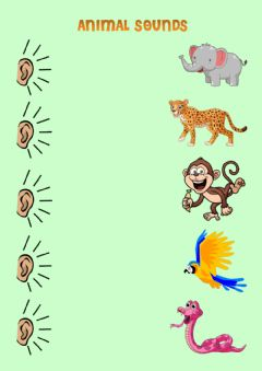 Interactive worksheet Wild animal sounds