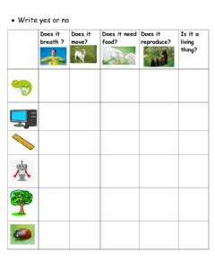 Interactive worksheet Living things and non living things