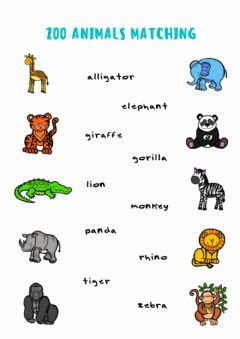 Ficha interactiva Zoo Animals Matching