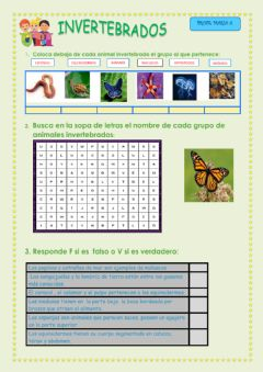 Interactive worksheet Invertebrados