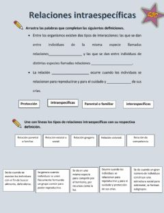 Interactive worksheet Relaciones intraespecíficas