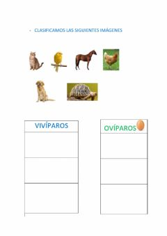 Interactive worksheet Los animales como nacen