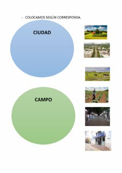 Interactive worksheet Campo. ciudad