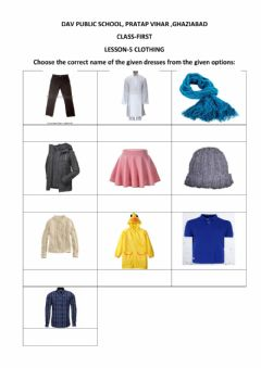 Interactive worksheet Evs clothing