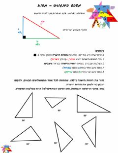 Interactive worksheet משפט פיתגורס - מבוא