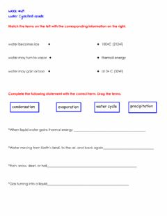 Interactive worksheet The Water Cycle