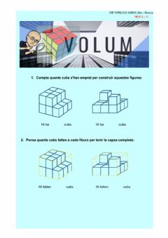 Interactive worksheet Volum