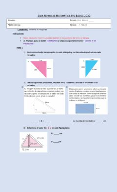 Interactive worksheet Guia de repaso