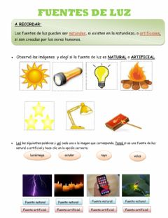 Interactive worksheet Fuentes de luz
