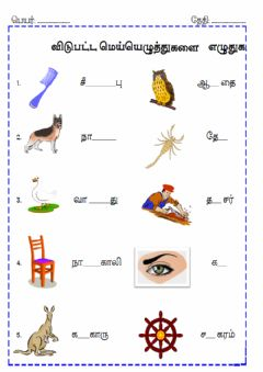 Interactive worksheet Tamil . worksheets