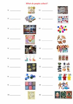 Interactive worksheet What do people collect?