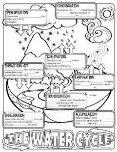 Interactive worksheet The Water Cycle Notes