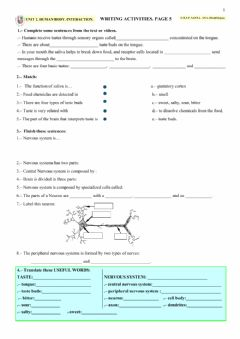Interactive worksheet HUMAN BODY. INTERACTION. Page 5