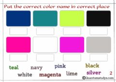 Interactive worksheet Color
