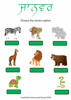 Interactive worksheet Animals - choose the correct option